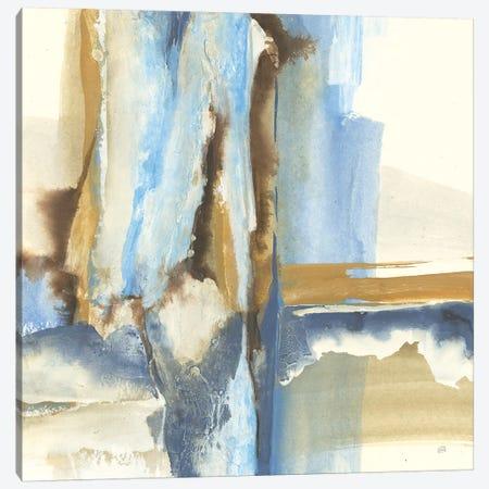 River Run II Canvas Print #CPA5} by Chris Paschke Canvas Print