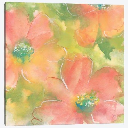 Summer Cosmos I Canvas Print #CPA75} by Chris Paschke Canvas Art Print