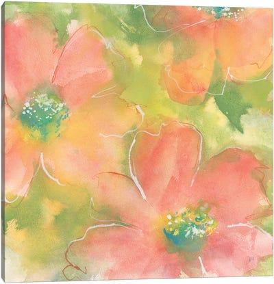 Summer Cosmos I Canvas Art Print