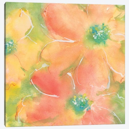 Summer Cosmos II Canvas Print #CPA76} by Chris Paschke Canvas Print