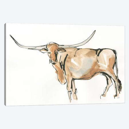 Longhorn II Canvas Print #CPA85} by Chris Paschke Canvas Wall Art