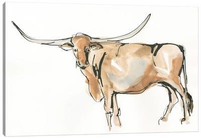 Longhorn II Canvas Art Print
