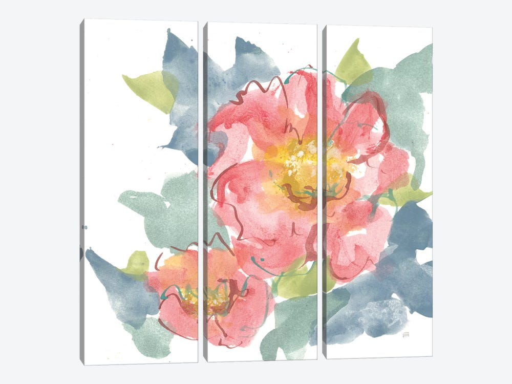 Peony in the Pink II on White by Chris Paschke 3-piece Canvas Art Print
