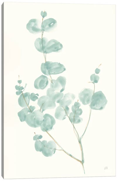 Eucalyptus Branch I Canvas Art Print
