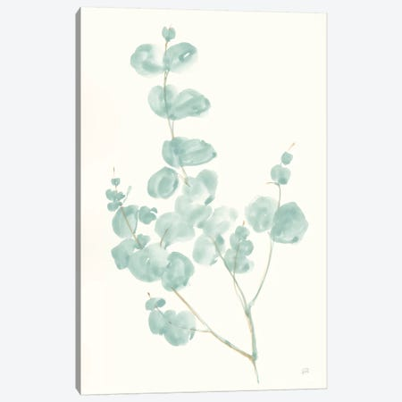 Eucalyptus Branch I Canvas Print #CPA93} by Chris Paschke Canvas Art