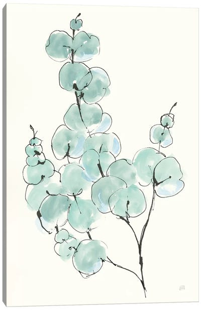 Eucalyptus Branch III Canvas Art Print