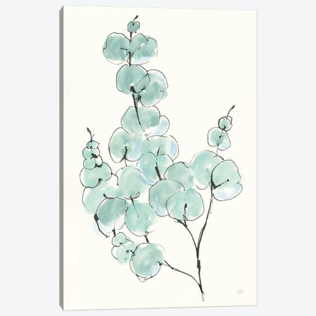 Eucalyptus Branch III Canvas Print #CPA95} by Chris Paschke Canvas Art Print