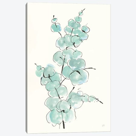 Eucalyptus Branch IV Canvas Print #CPA96} by Chris Paschke Canvas Art Print