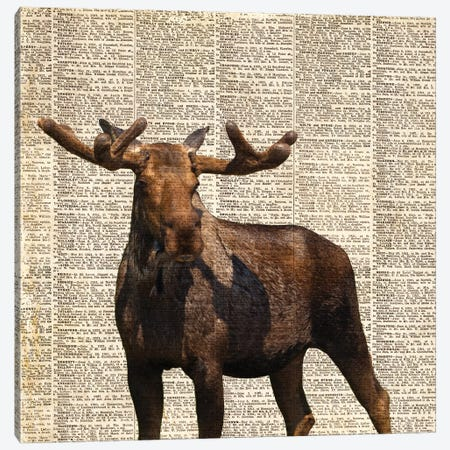Country Moose I Canvas Print #CPP2} by Anna Coppel Canvas Art