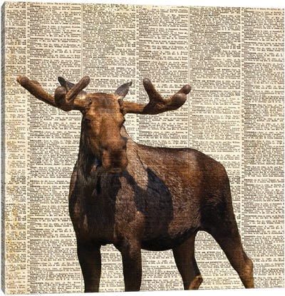 Country Moose I Canvas Art Print