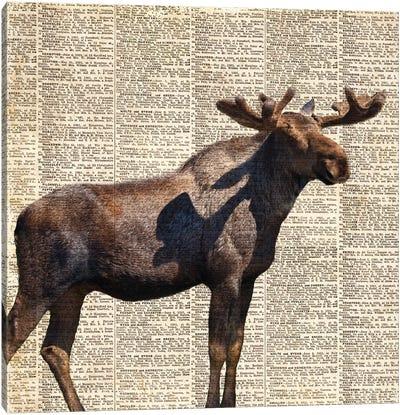Country Moose II Canvas Art Print