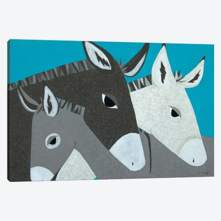 Donkey Family Canvas Print #CRA1} by Casey Craig Canvas Wall Art