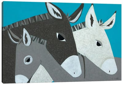 Donkey Family Canvas Art Print