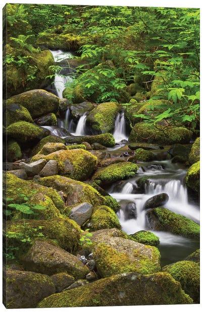 USA, Oregon, Hood River. A waterfall on Tish Creek. Canvas Art Print