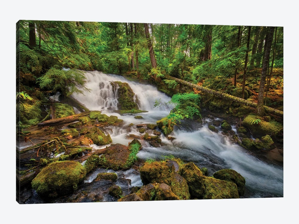 USA, Oregon, Prospect. Pearsony Falls near the Prospect State Scenic Viewpoint. by Christopher Reed 1-piece Canvas Art