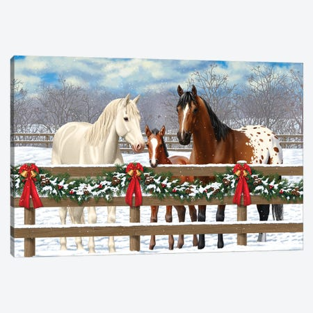 Horse Family-White Christmas Canvas Print #CRF4} by Crista Forest Canvas Art