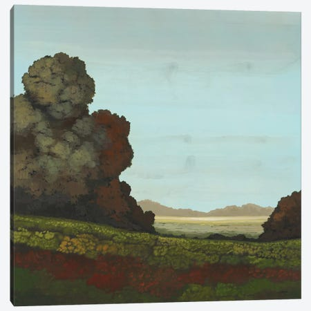 Distant Meadow I Canvas Print #CRN13} by Robert Charon Canvas Wall Art