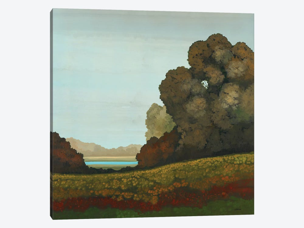 Distant Meadow II by Robert Charon 1-piece Canvas Print