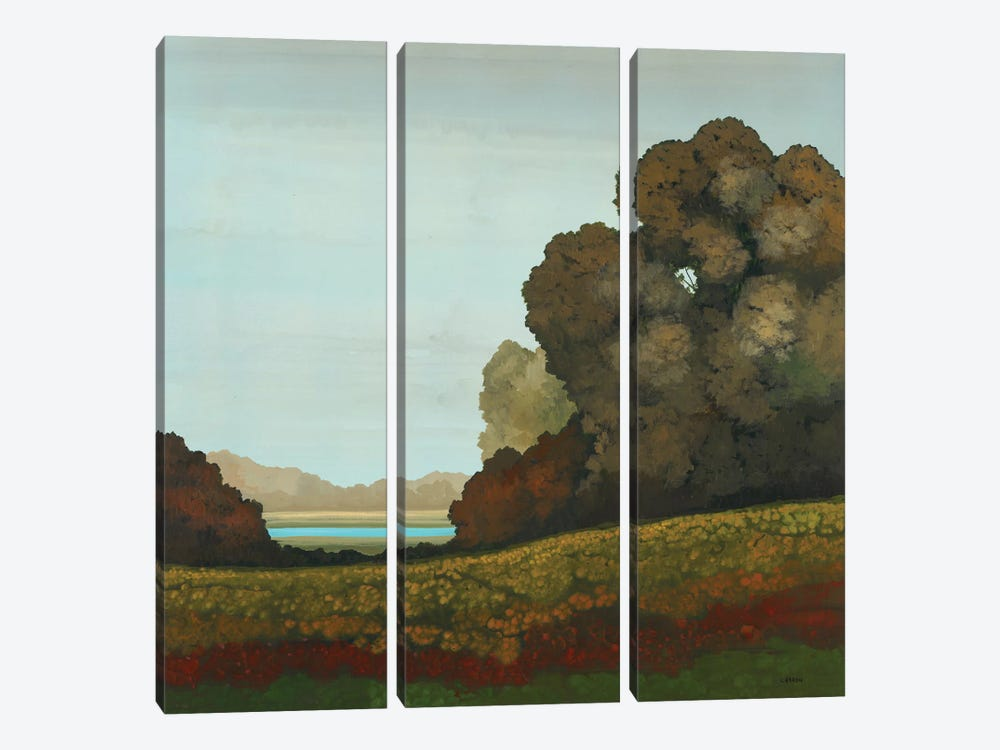 Distant Meadow II by Robert Charon 3-piece Canvas Art Print