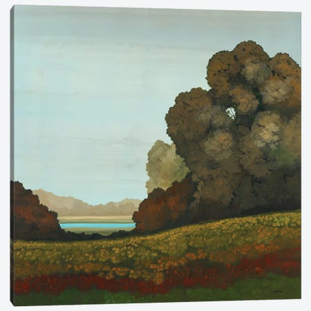 Distant Meadow II Canvas Print #CRN14} by Robert Charon Canvas Art Print