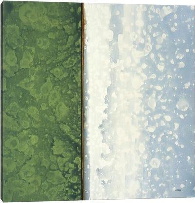 Jade Canvas Art Print