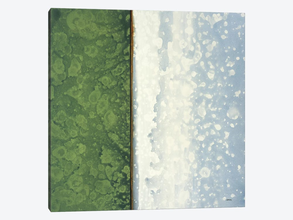Jade by Robert Charon 1-piece Canvas Print