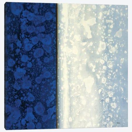 Lapis Canvas Print #CRN17} by Robert Charon Canvas Print