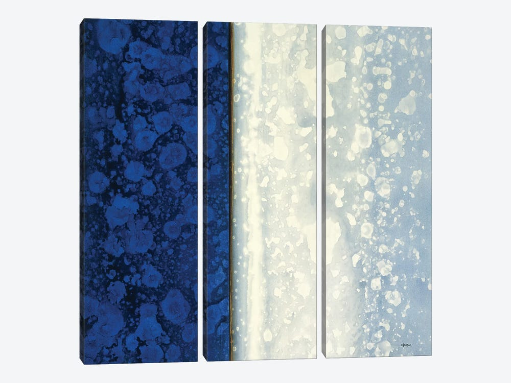 Lapis by Robert Charon 3-piece Canvas Wall Art