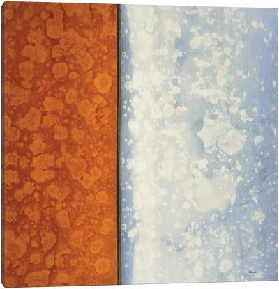 Topaz Canvas Art Print