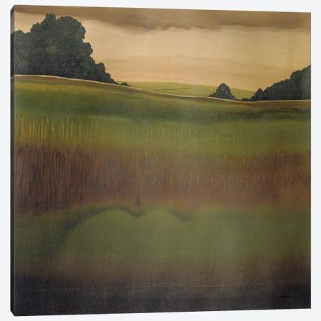 Dusk IV Canvas Print #CRN28} by Robert Charon Canvas Print