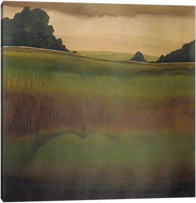 Dusk IV Canvas Art Print