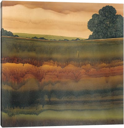 Dusk V Canvas Art Print