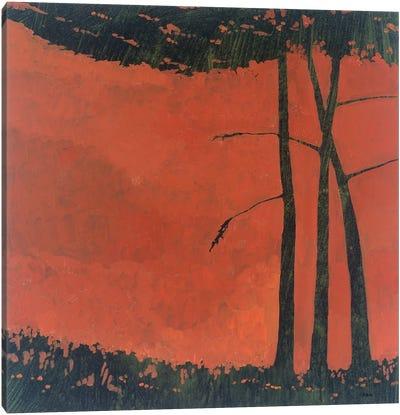 Forestscape II Canvas Art Print