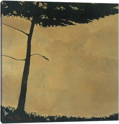 Forestscape III Canvas Art Print