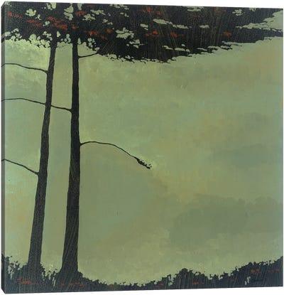 Forestscape IV Canvas Art Print