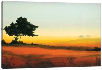 Golden Glow III Canvas Art Print