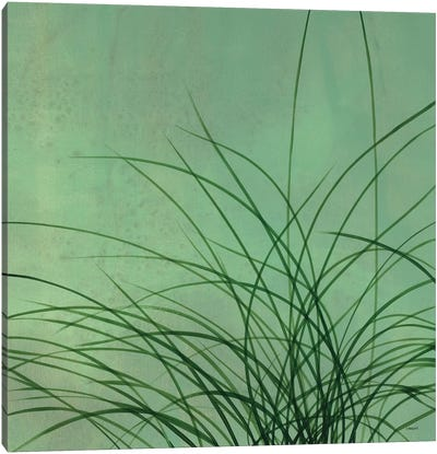 Grasses II Canvas Art Print