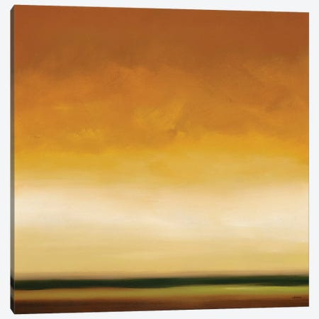 Horizon II Canvas Print #CRN45} by Robert Charon Canvas Wall Art