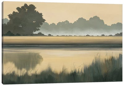 Golden Glow Canvas Art Print