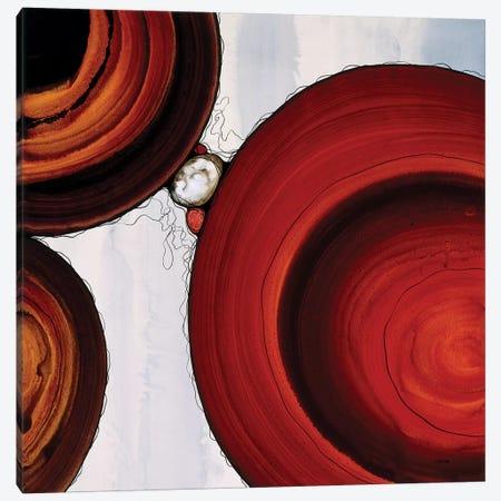 Orbs IV Canvas Print #CRN60} by Robert Charon Canvas Print