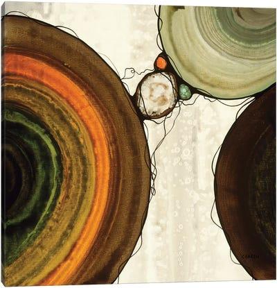 Orbs IV Canvas Art Print