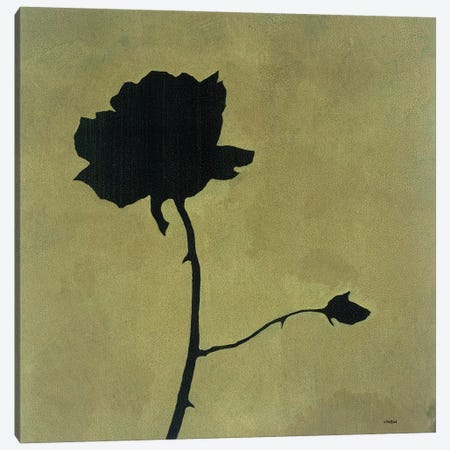 Rose Canvas Print #CRN70} by Robert Charon Canvas Artwork