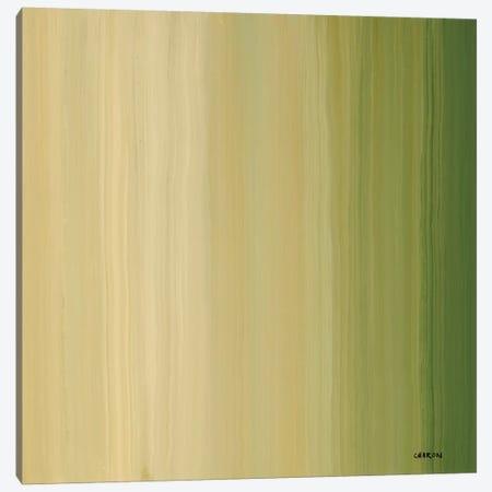 Stripes I Canvas Print #CRN73} by Robert Charon Canvas Art