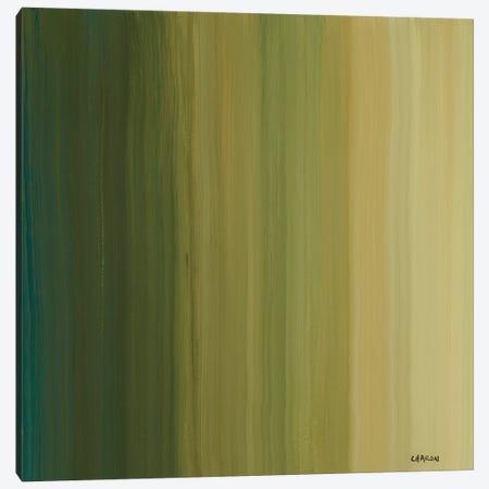 Stripes II Canvas Print #CRN74} by Robert Charon Art Print