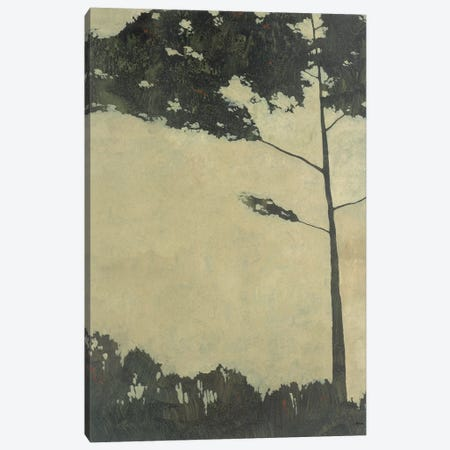 Treescape XI  Canvas Print #CRN77} by Robert Charon Art Print
