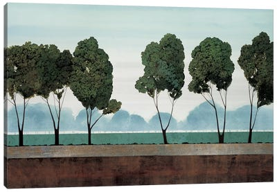 Six Trees Canvas Art Print