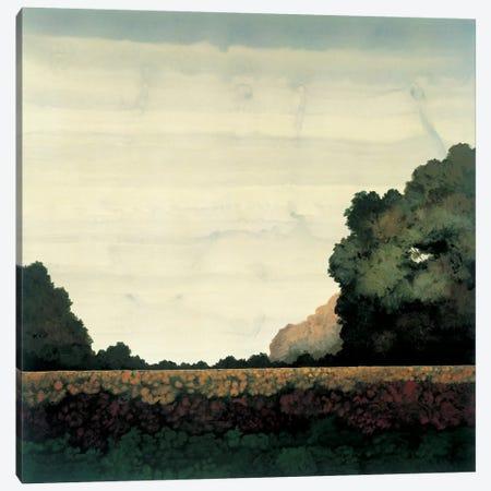 Tree Line I Canvas Print #CRN8} by Robert Charon Art Print