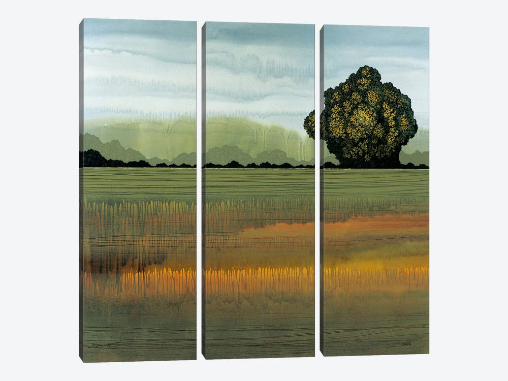 Along The Way II by Robert Charon 3-piece Canvas Art