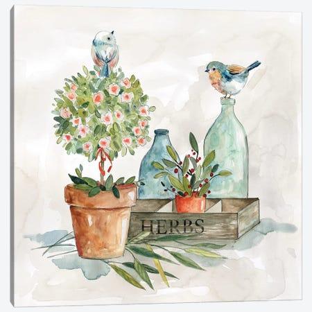 Garden Glimpse II Canvas Print #CRO1009} by Carol Robinson Canvas Wall Art
