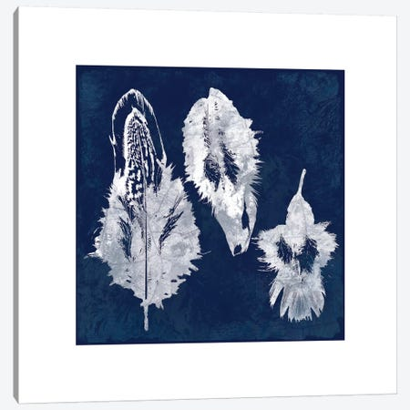Cyanotype Feather I Canvas Print #CRO100} by Carol Robinson Canvas Artwork